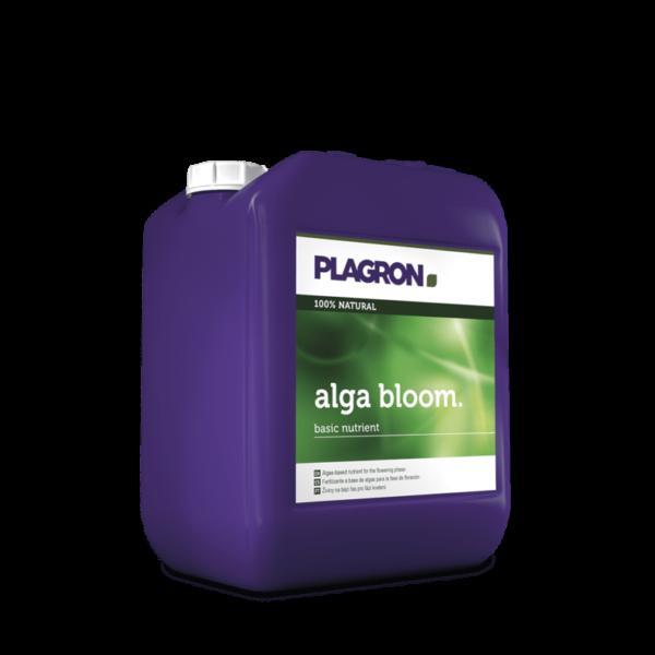 5l 10l alga bloom