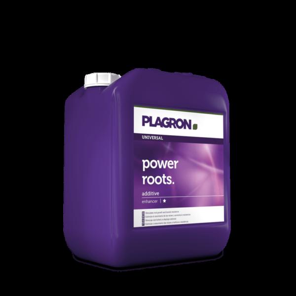 5l power roots