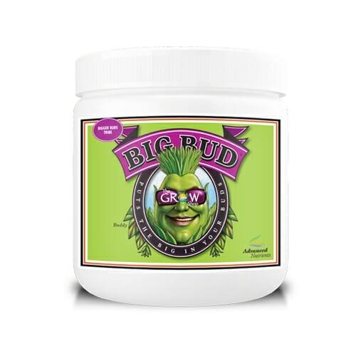 Big Bud Powder Web