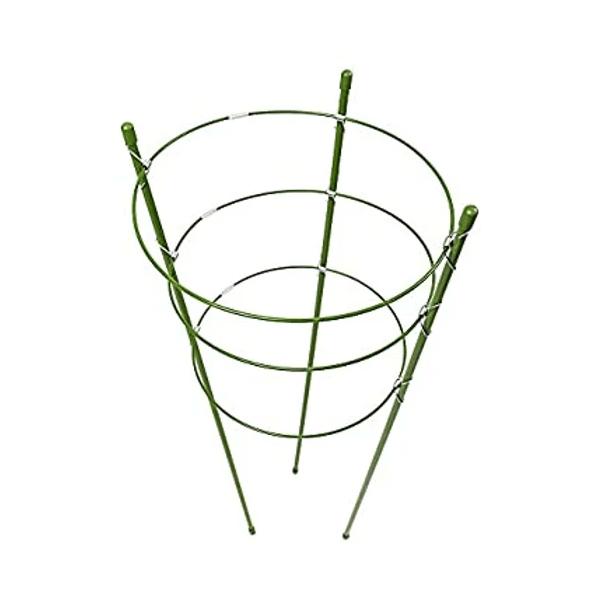Circular Trellis