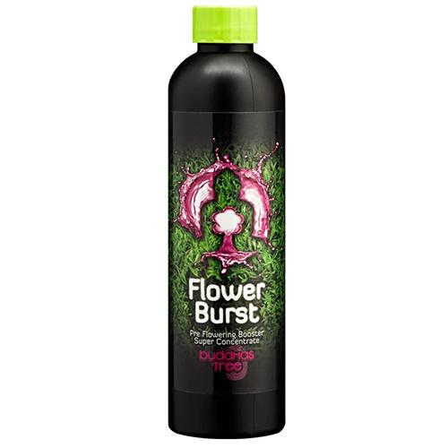 Flower Burst 250ml